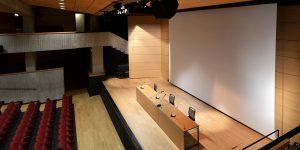liuni-pavimenti-vinilici-wudawood-auditorium-4
