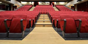 liuni-pavimenti-vinilici-wudawood-auditorium-5